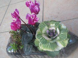 家庭菜園のプランター1
