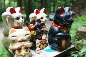 白と黒の招き猫