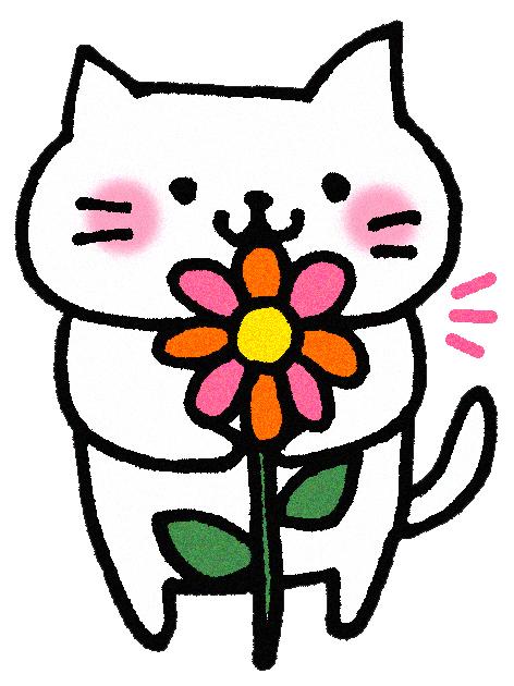 敬老の日のプレゼントにはリンドウ!喜ばれる花No.1の理由とは?