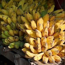 束のバナナ