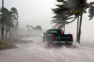 暴雨の被害